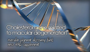 Genes linked to macular degenerations