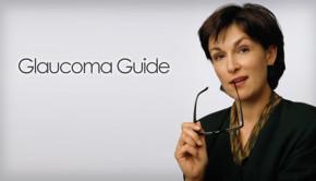 Glaucoma guide